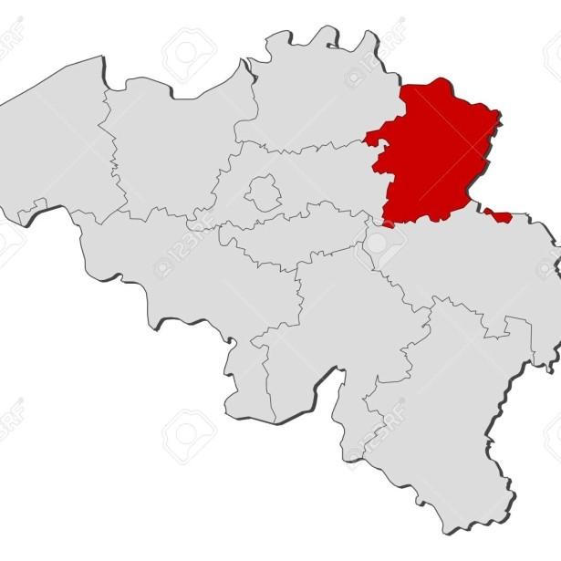 Afbeelding Limburgse deelnemers WCG 2020